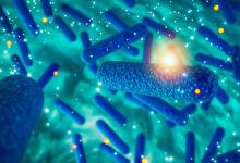 Photo of Un super-antibiotico scoperto dall'intelligenza artificiale